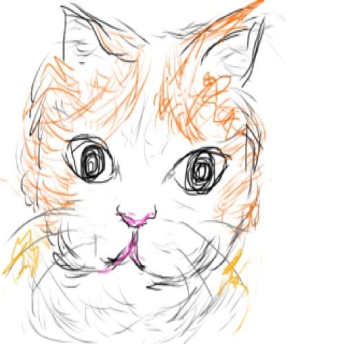 shizucamera's avatar