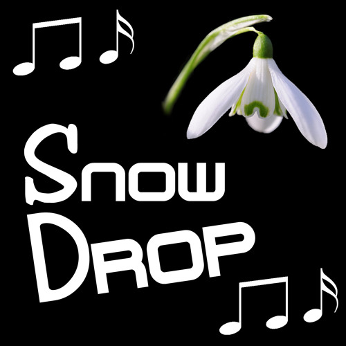SnowDrop's avatar