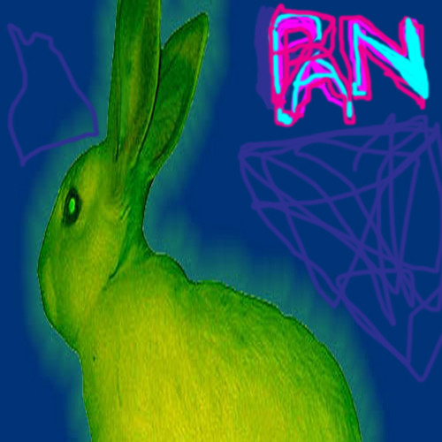 PAN ∆'s avatar