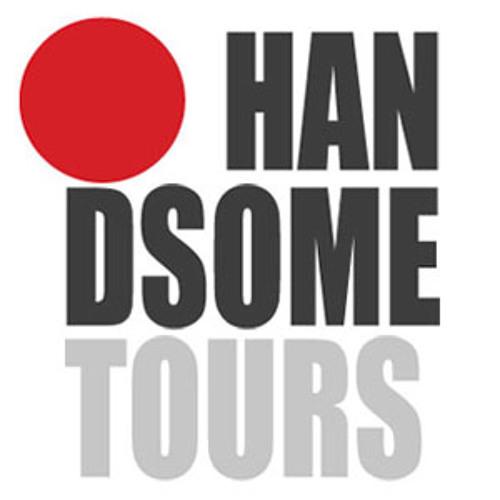 handsometours.com's avatar