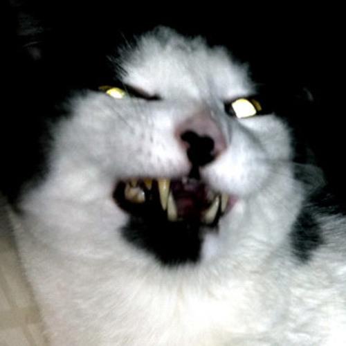jpassen's avatar