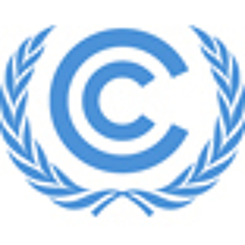 Loss and damage issues at COP 19