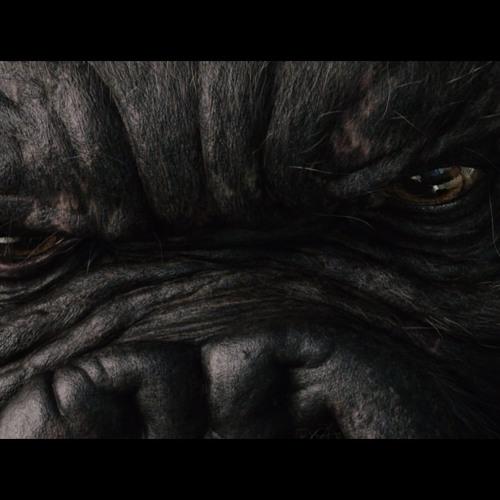 Sr.KONG's avatar