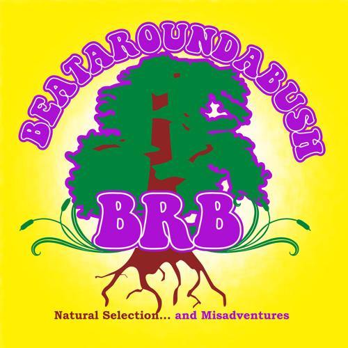 Beataroundabush's avatar