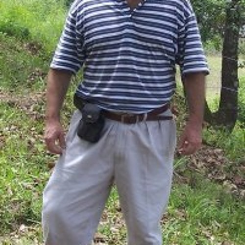 Manuel Tripp's avatar