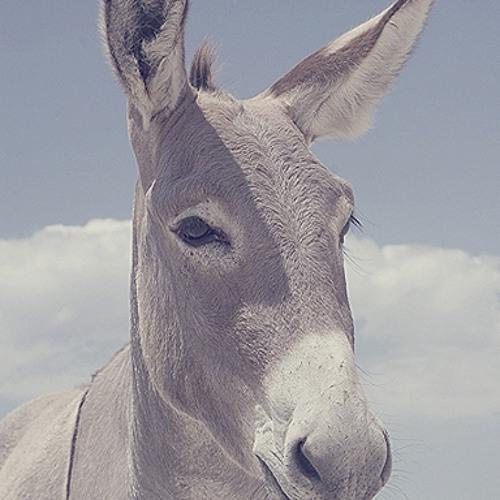 LouBiDoo's avatar
