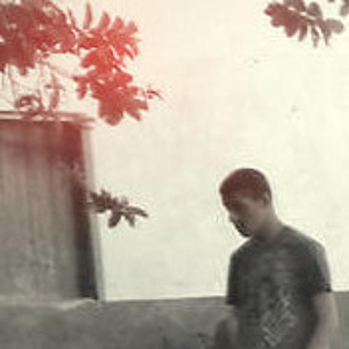 Lucas Ferreira de Almeida's avatar