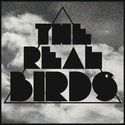 The RealBirds's avatar