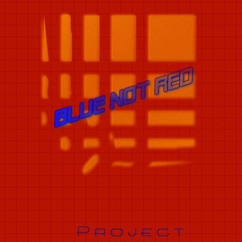 Blue Not Red Project's avatar