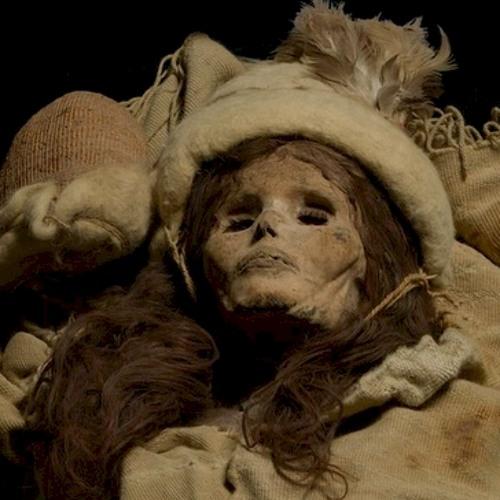 Mummifiedjunk's avatar