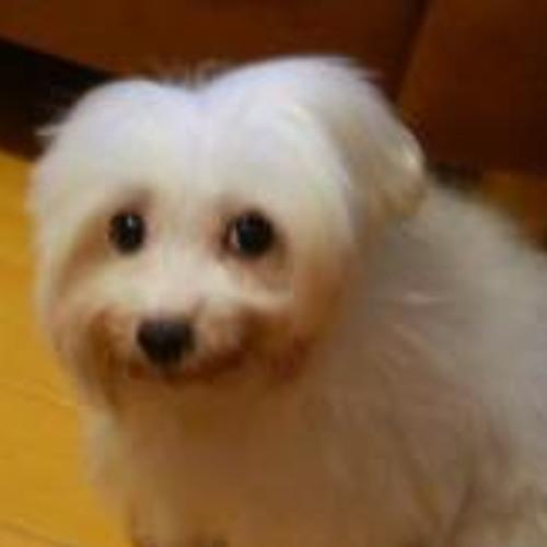 MoobyG's avatar