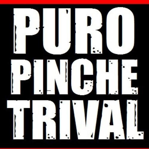 Cumbia Trival's avatar