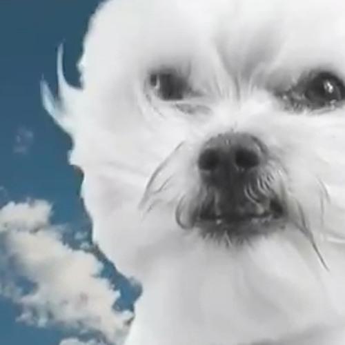 djhankchill's avatar