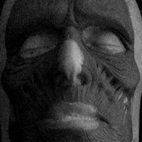 rollthetroll's avatar