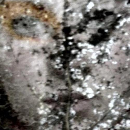 Sourire's avatar