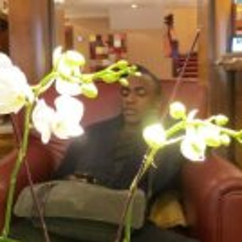 Nnamdi Ogbechie's avatar