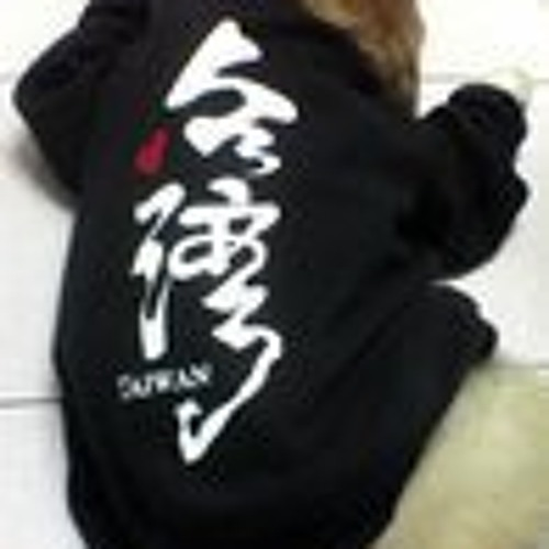 S T Chiu's avatar