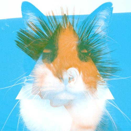 Aѧ ₰'s avatar