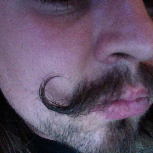 jessecarl-1's avatar