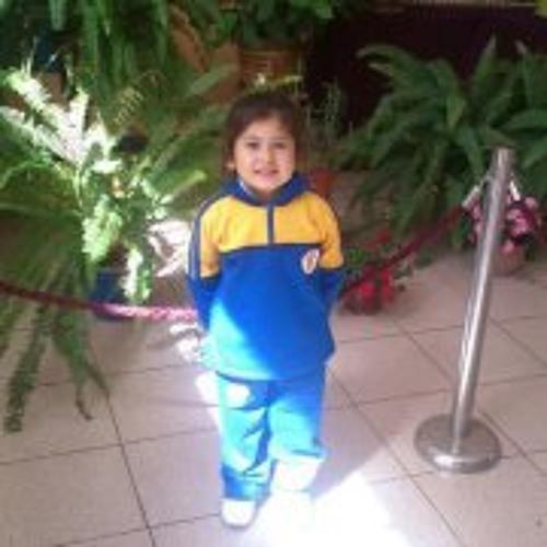 Camilo Poza Araneda's avatar