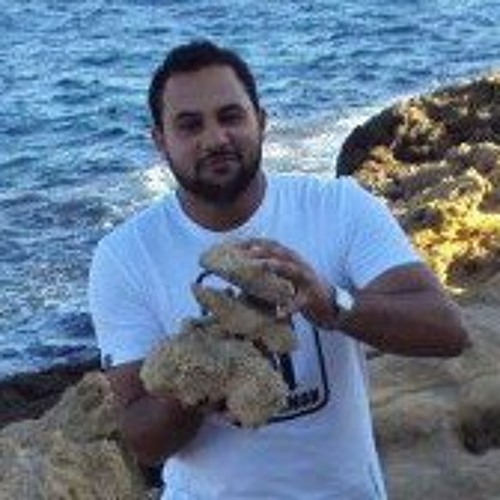 Slim Ben Nasrallah's avatar
