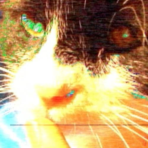 Catsweat's avatar