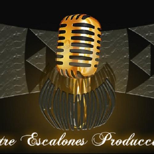 ENTRE ESCALONES PROD..'s avatar