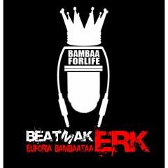 Erk Beat