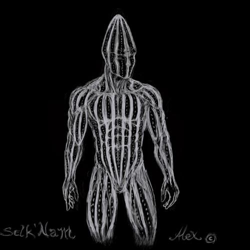 Selknam's avatar