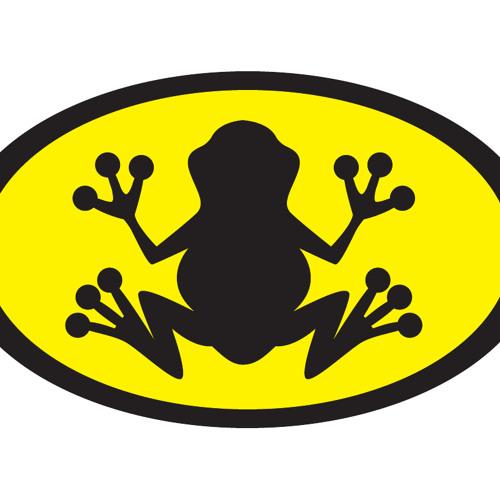 frogg's avatar