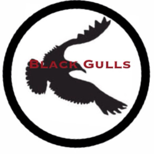 Black Gulls's avatar