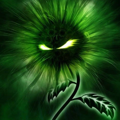 little green planet :)'s avatar
