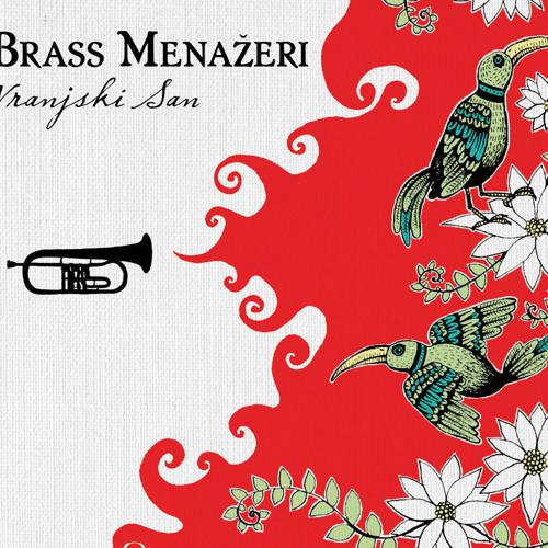 Brass Menazeri's avatar