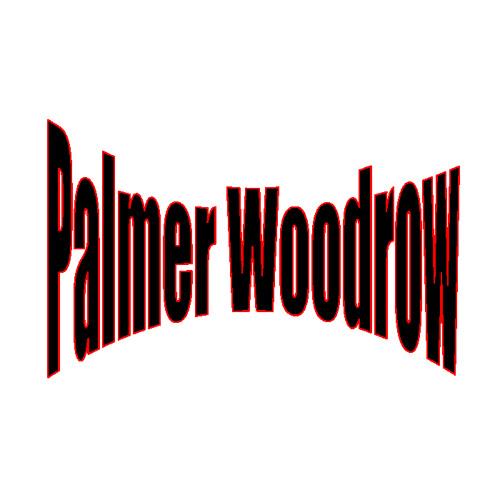 Palmer Woodrow's avatar