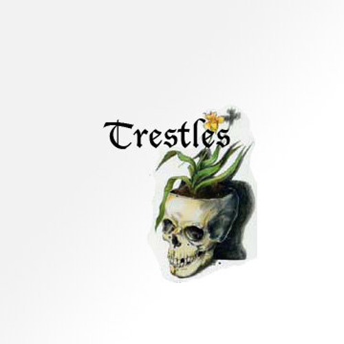 Trestles's avatar