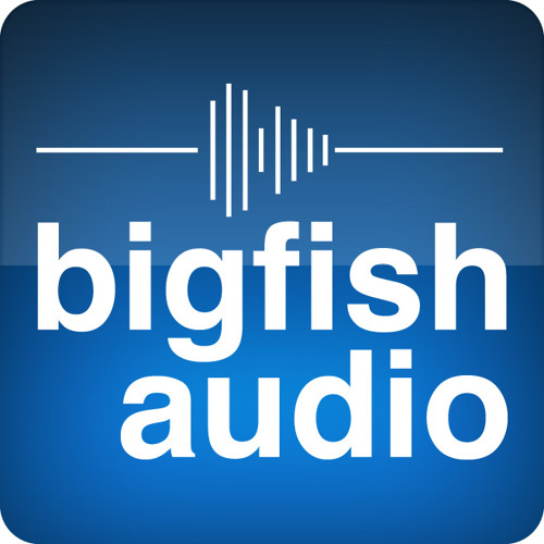 Big Fish Audio's avatar