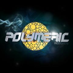 Polymeric Records