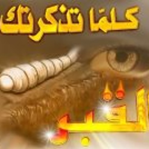 Mohey Eldeen Ahmed's avatar