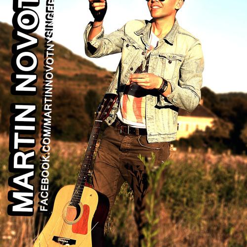 Martin Novotny's avatar