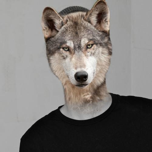 VERLETIC's avatar