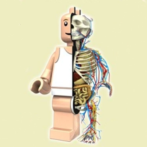 LegoBlocks's avatar
