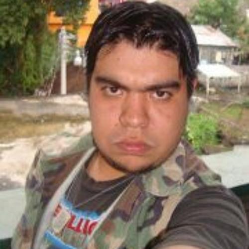Carlos Gustavo Villegas's avatar