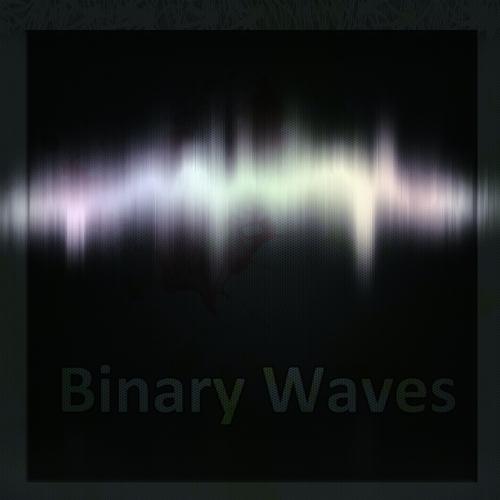 Binary Waves's avatar