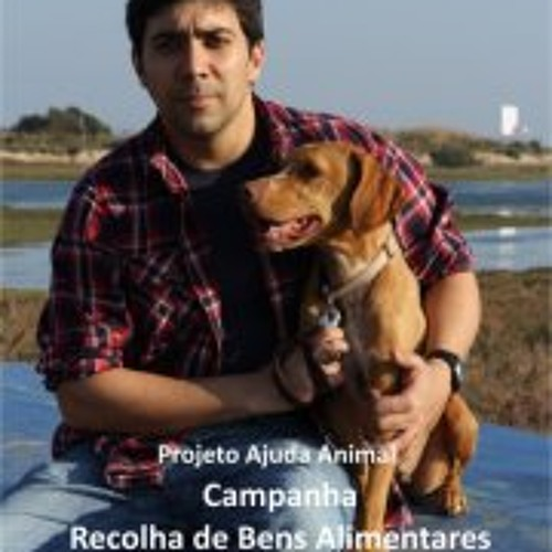 Mateus Lourenço's avatar