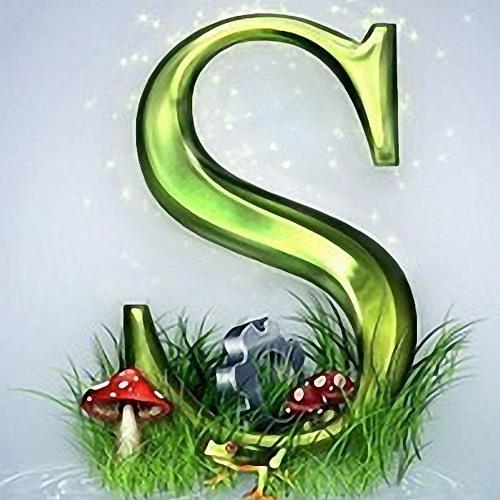 snnka's avatar