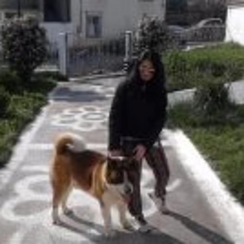 Giota Runner's avatar