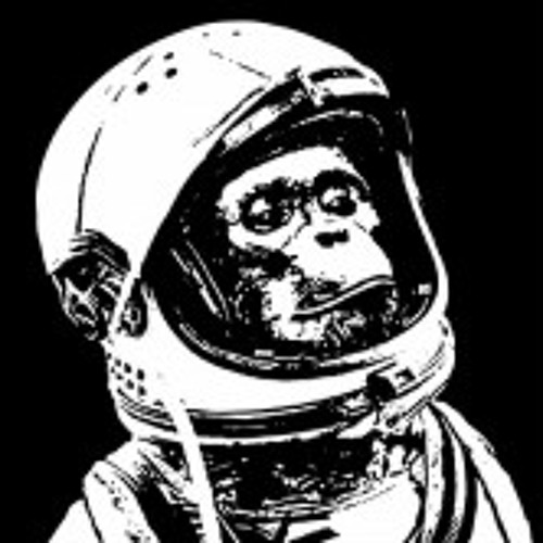 Space Munkey's avatar