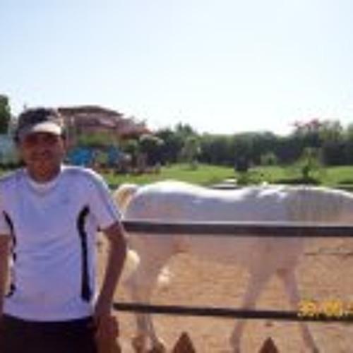 Mohamed Mosallem's avatar