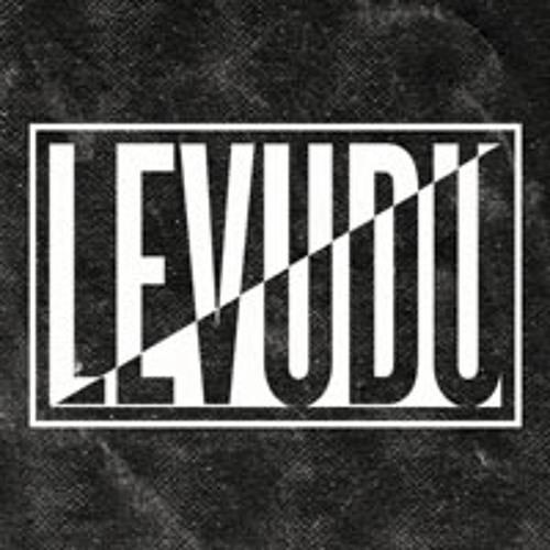 LEVUDU's avatar