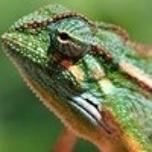 kameleon300's avatar